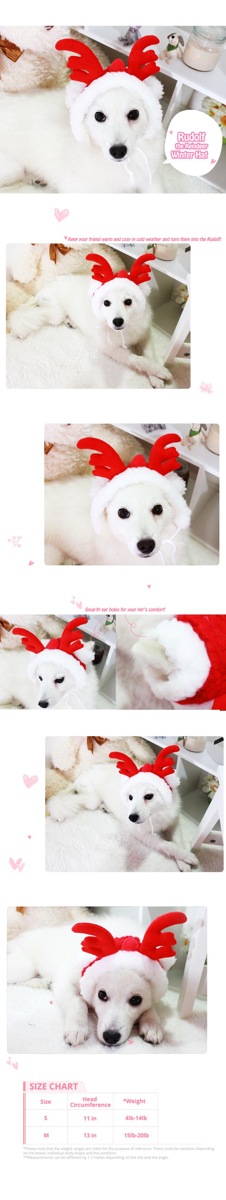 rudolf-the-reindeer-winter-hat.png